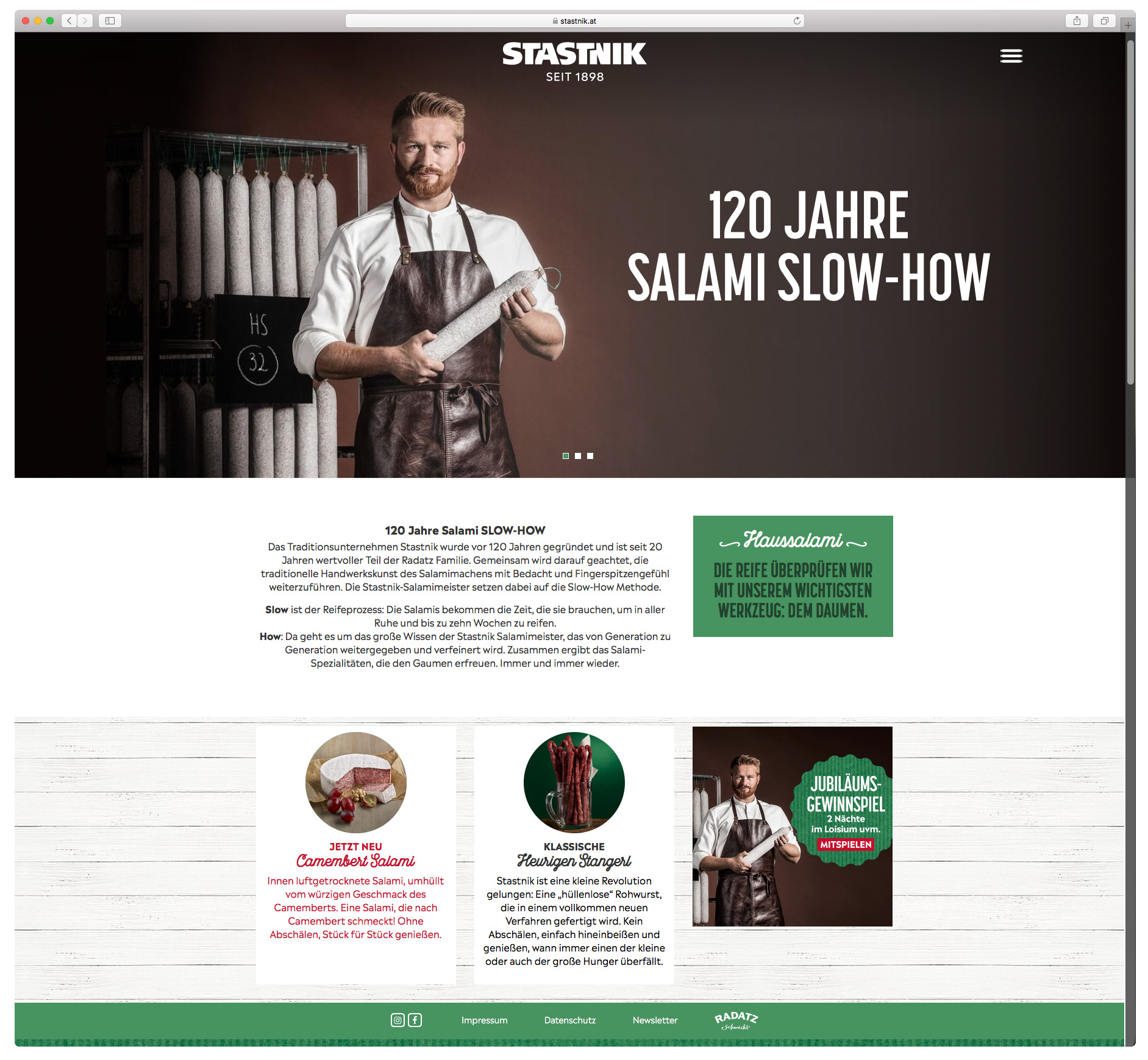 Stastnik_Website_georgzechner